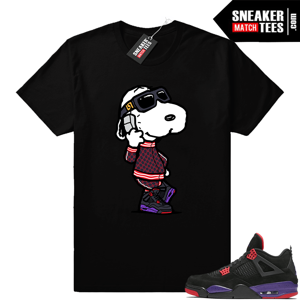 Air Jordan 4 Raptors shirt