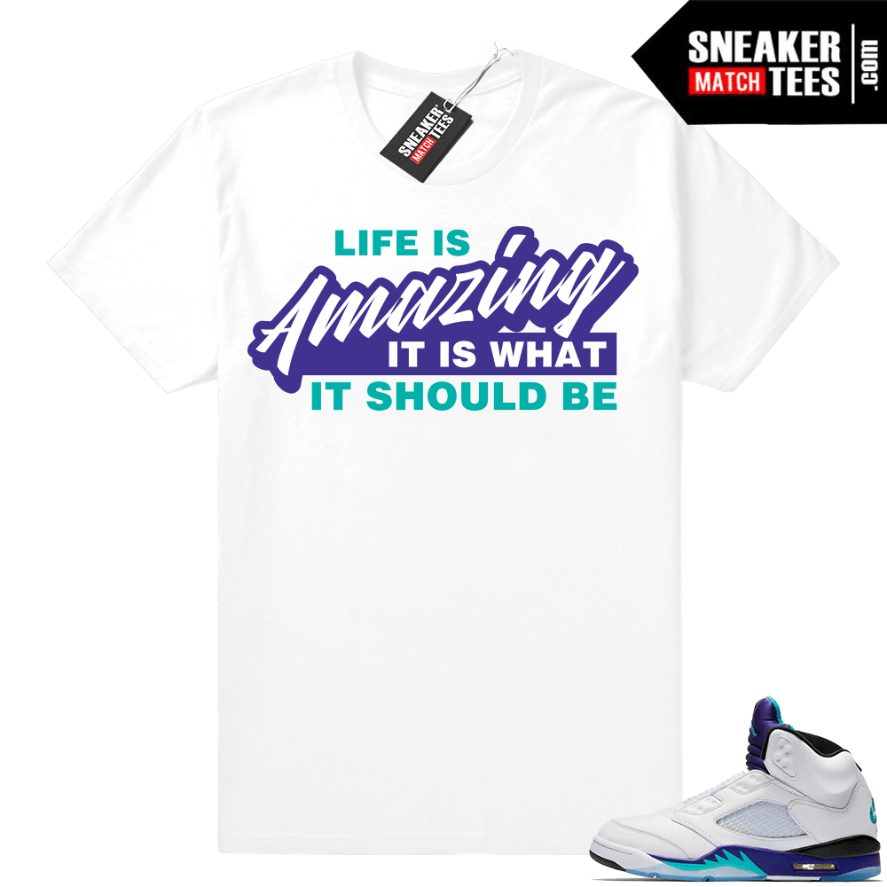 9f773075c57 Match Air Jordan retro 5 Fresh Prince Shirt | Sneaker Match Tees