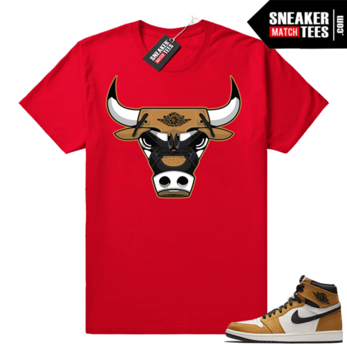 Jordan 1 Rookie of the Year matching shirt