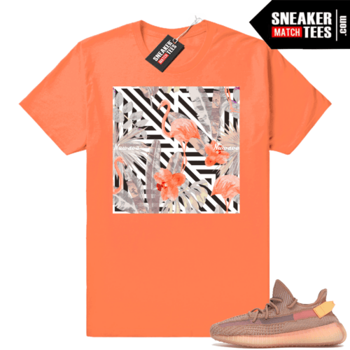 Clay Yeezy boost 350 shirts match