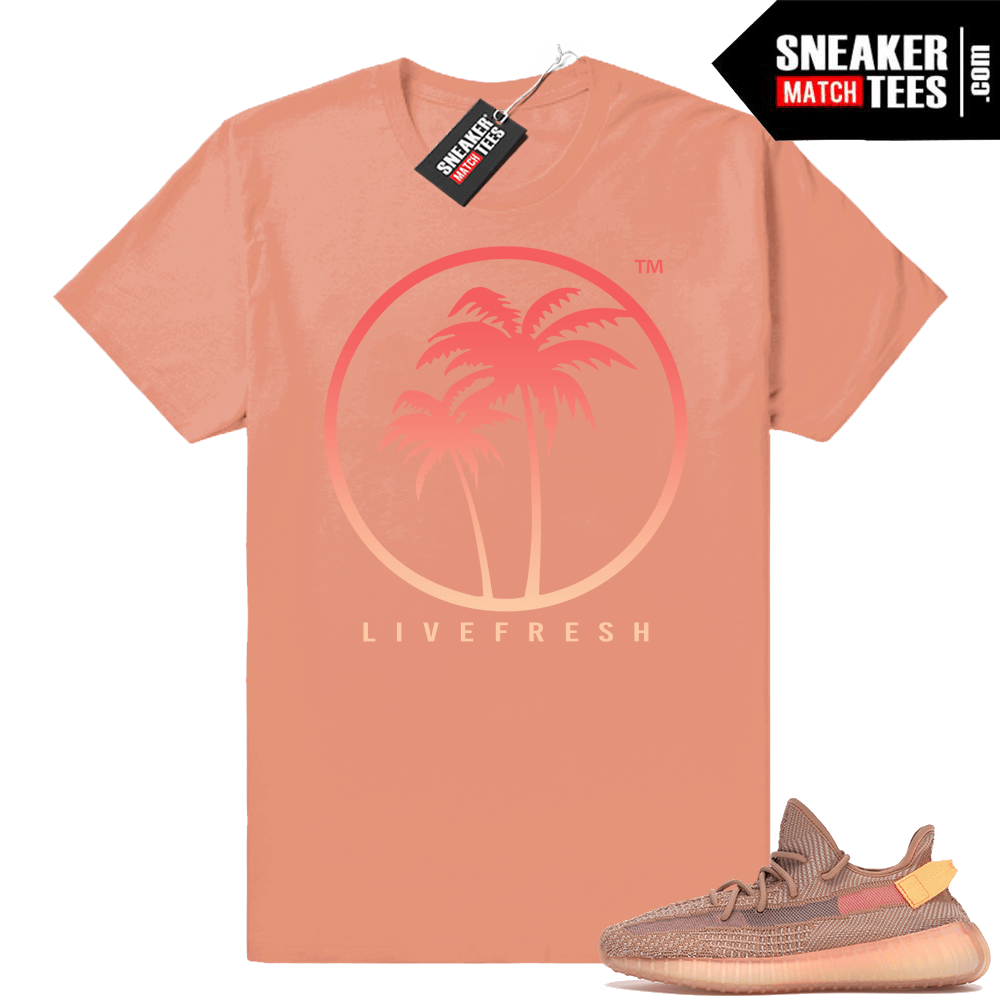 Shirts to match Clay 350 sneakers