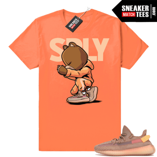Yeezy 350 Clay shirt match