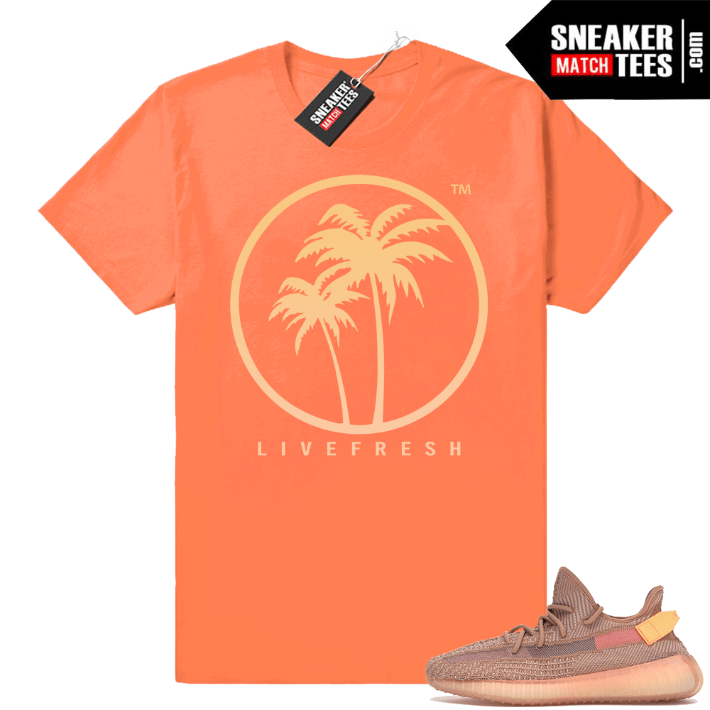 Yeezy Boost 350 V2 Clay sneaker matching shirt