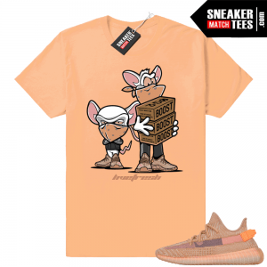Sneaker tees - Shirts to match Sneakers  400297cf0