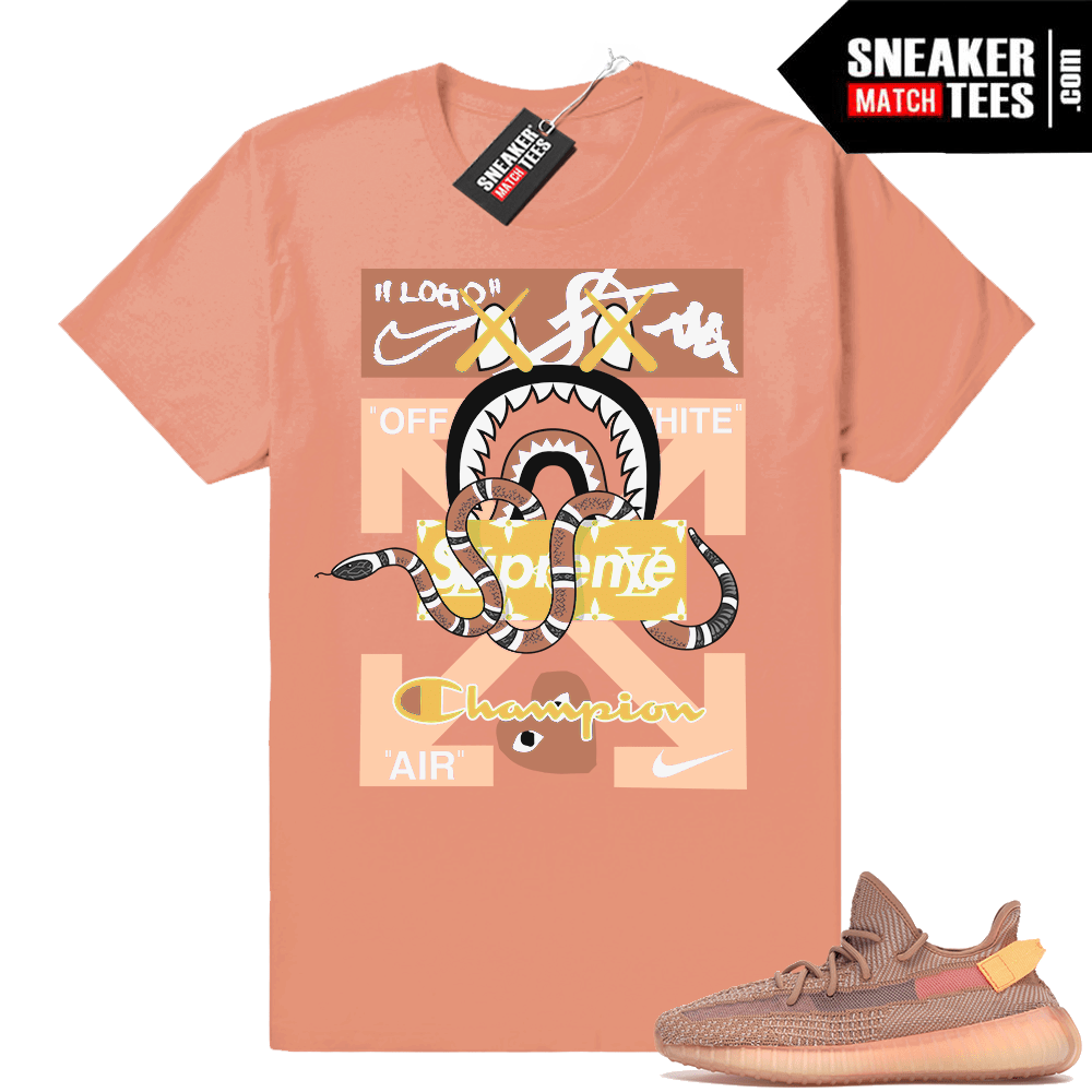 Yeezys 350 Clay sneaker match