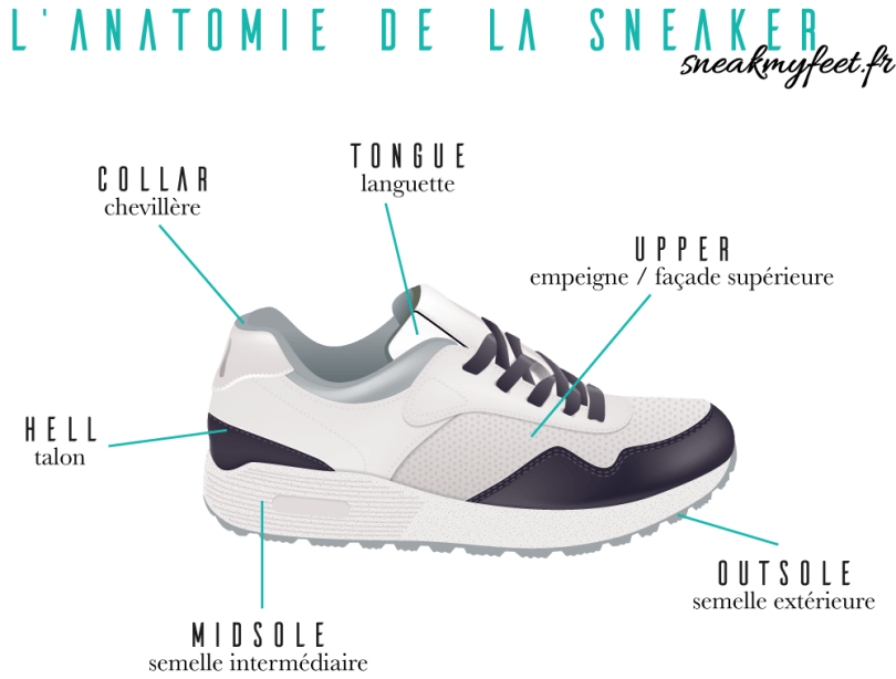 anatomie-sneakers-vocabulaire