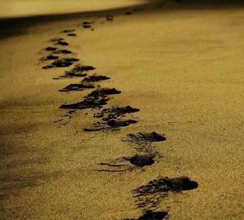 Best Footwear For Beach Walking