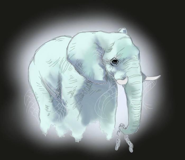 Elephantom by Amanda Wood