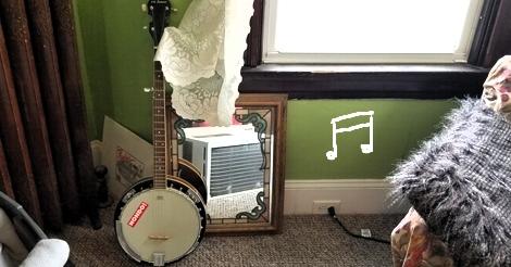 yo yo banjo
