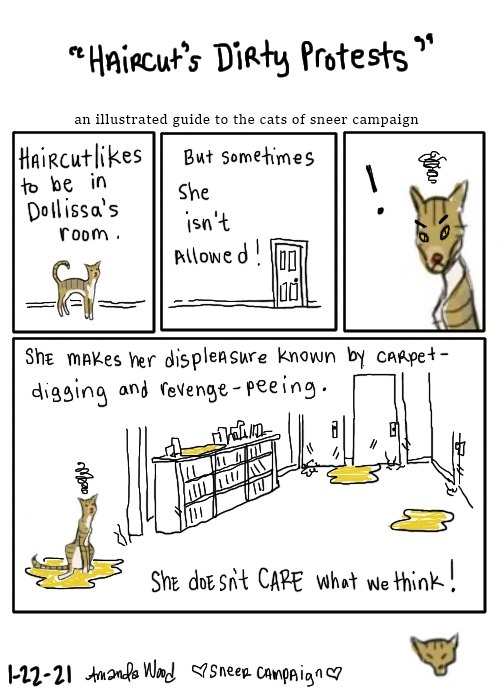 "A comic titled ""Haircut's Dirty Protests,"" an illustrated guide to the cats of sneer campaign. Panel one says ""Haircut likes to be in Dollissa's room."" A tiny depiction of Haircut is under the words. She is a slight tuxedo pattern brown tabby. Panel two shows a closed door, and the words, ""But sometimes she isn't allowed!"" Panel three is a close up of Haircut's angry face with a grumpy cloud above her and a dark exclamation point next to her, indicating shock. Panel 4 is larger, beneath the rest. There is a hallway with closed doors, a bookshelf. There is disarray, suspicious yellow puddles, scratches and chaos -- still-angry storm cloud Haircut in the foreground. The words say: ""She makes her displeasure known by carpet-digging and revenge-peeing. She doesn't care what we think!"""
