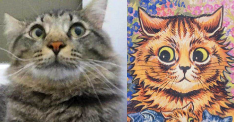 Side by side comparison picture. On the left is Jackson, a long haired brown tabby cat looking comically to the side with big round pupils. On the right is an illustration by turn of the last century cat artist Louis Wain of a tabby cat with similar eyes looking to the side, too.
