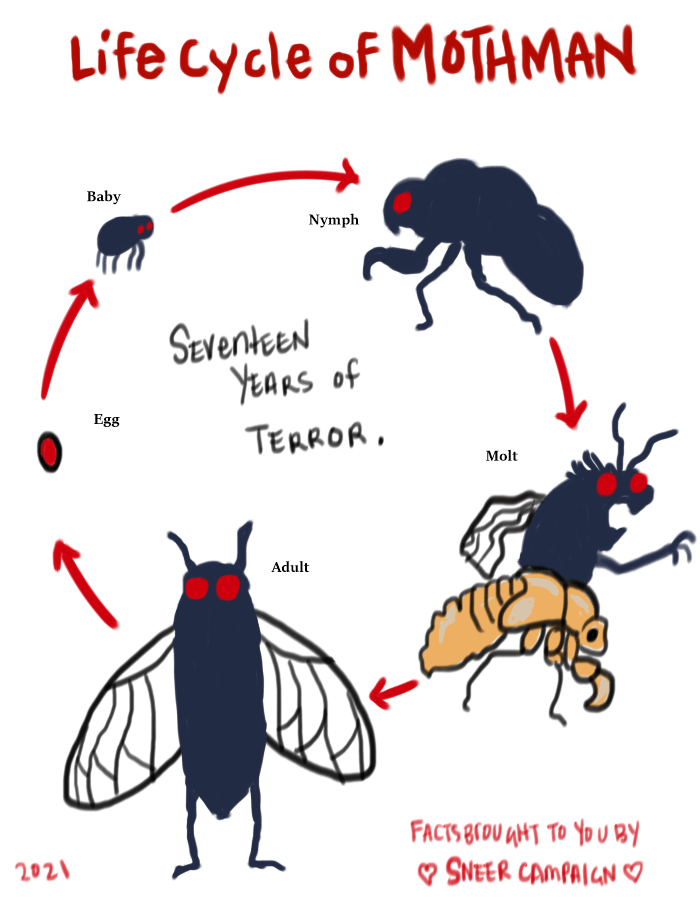 """A chart showing the Life Cycle of Mothman. First there is a single red egg, and then a baby which is a little blue-grey form with wiggly legs and red eyes. Then a frightening """"nymph"""" which looks like a cicada nymph only dark blue-grey with red eyes. It has an exaggerated claw. Next is the """"molt"""" phase where the mothman is erupting from the back of the nymph shell. Then there is the final form, the Mothman as an adult."""