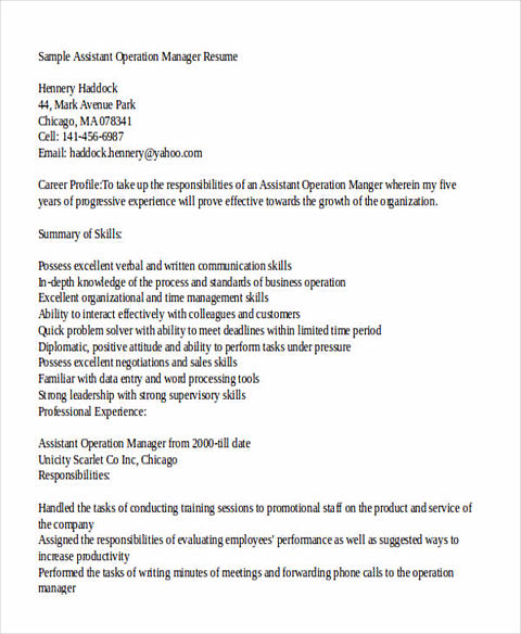 It Operations Manager Resumes  Operations Director Resume