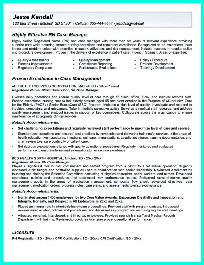 sample risk management resume risk management resume example
