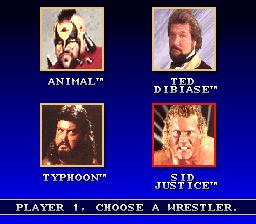 WWF Super WrestleMania 05