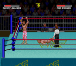 WWF Super WrestleMania 08
