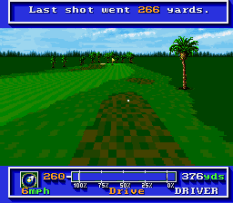 PGA Tour Golf 10