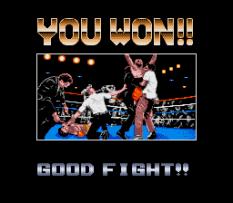 TKO Super Championship Boxing 29