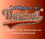 Cal Ripken Jr. Baseball 01