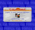 California Games II 12