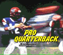 Pro Quarterback 01