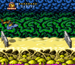 Battletoads in Battlemaniacs 18