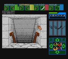 Dungeon Master 11