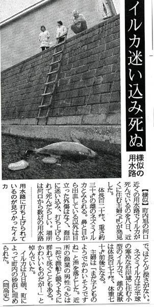 image/snh-2007-10-10T18:13:49-1.jpg