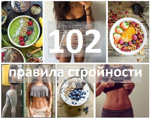 102 правила стройности