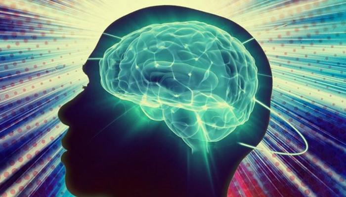 Как легко улучшить работу мозга
