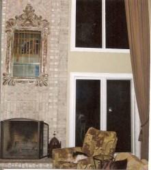 living room fireplace w