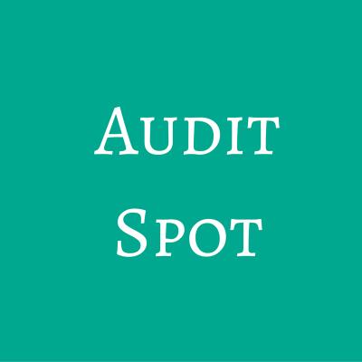 Audit Spot
