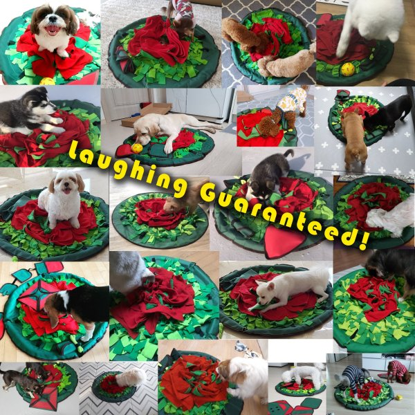 snuffle mat sniff and laugh