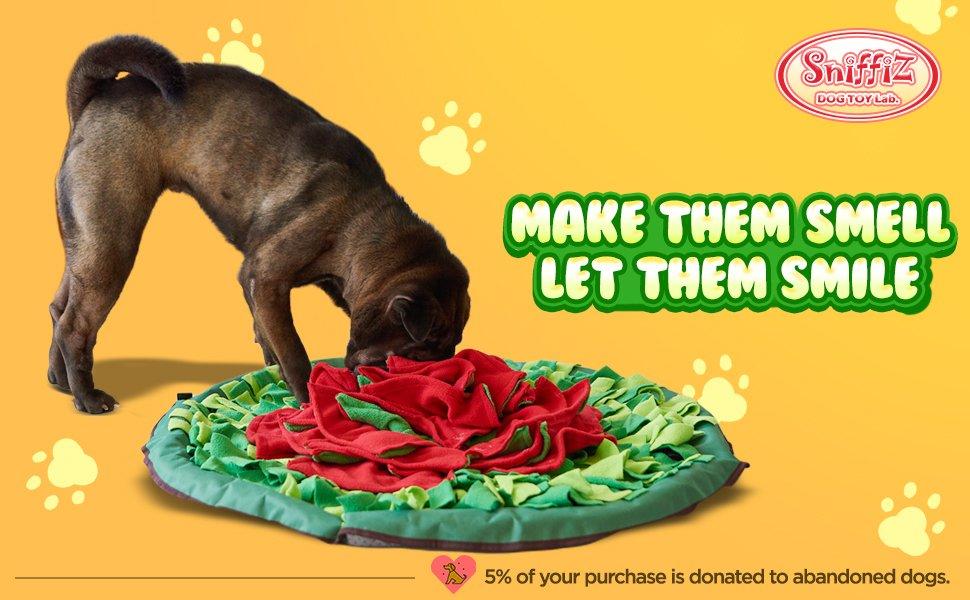 Sniffiz Snuffle Mat foraging, interactive dog toys