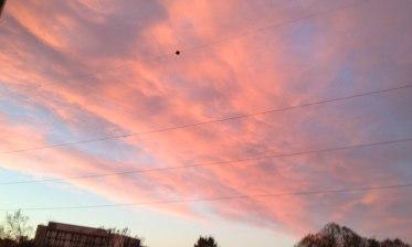 Beautiful sunset on the sky on a beautiful day