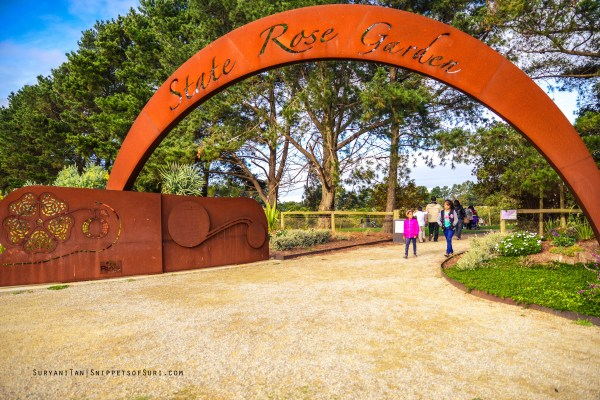 State rose garden