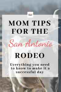 What you need to know about the San Antonio Stock Show & Rodeo