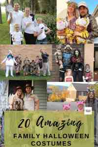 20 Spookily Amazing Family Halloween Costumes