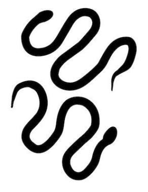 free snake silhouette svg