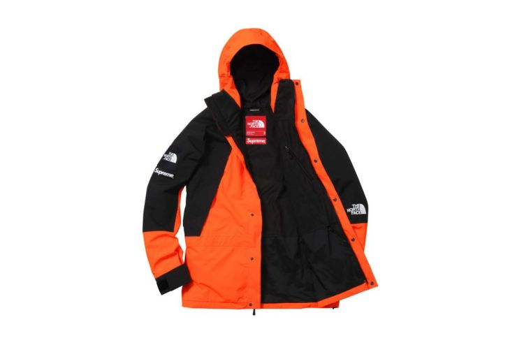 supreme-x-the-north-face-2016-fall-winter-collection-18