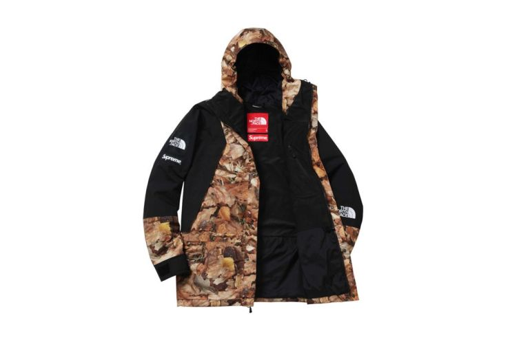 supreme-x-the-north-face-2016-fall-winter-collection-21