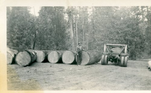 Logging in Yosemite 1952