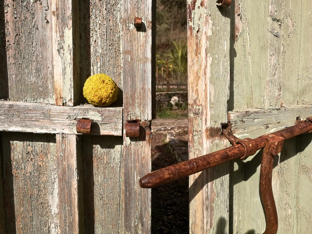 Gate detail. Photo © Karethe Linaae