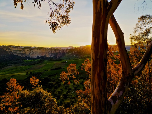 Ronda at sunrise. Photo © Karethe Linaae