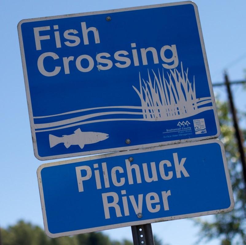 pilchuck