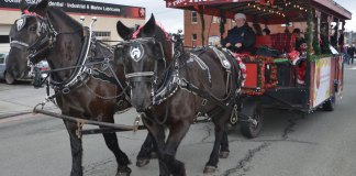 Skagit County Holiday Activities Anacortes Coastal Christmas