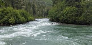 Mount Baker-Snoqualmie National Forest