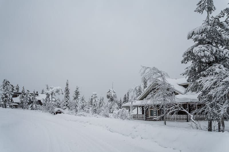 Lapland covered in snow is beautiful