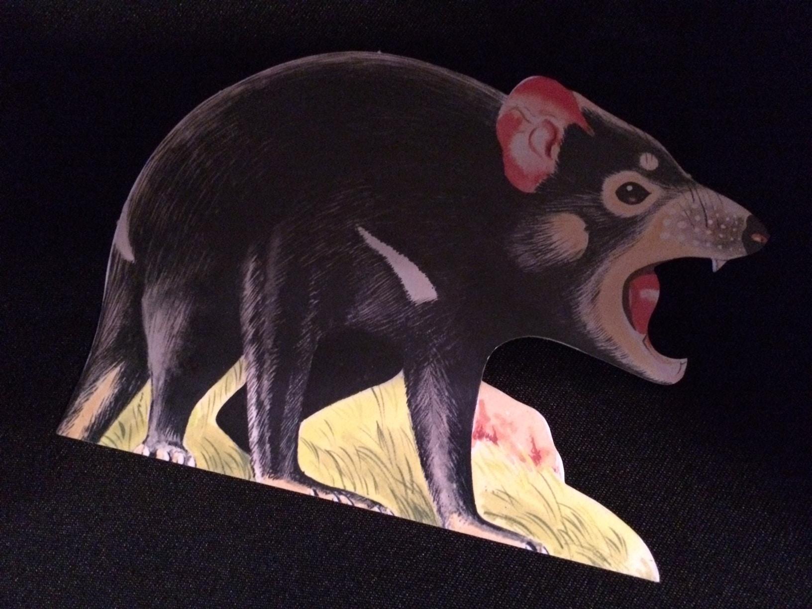 Taz - Tasmanischer Teufel, Postcard of the Week