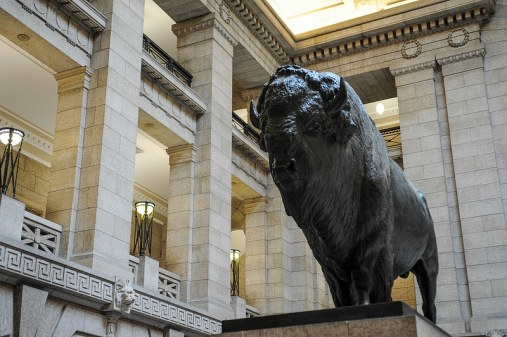 Büffel im Manitoba Legislative Building